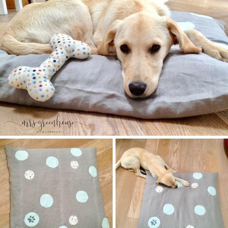 Hundekissen mit Punkten selbermachen