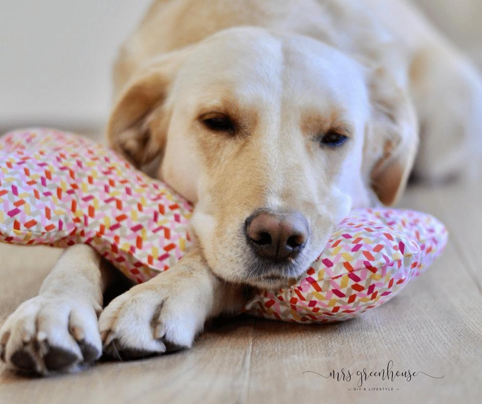 Hundeknochen aus Stoff