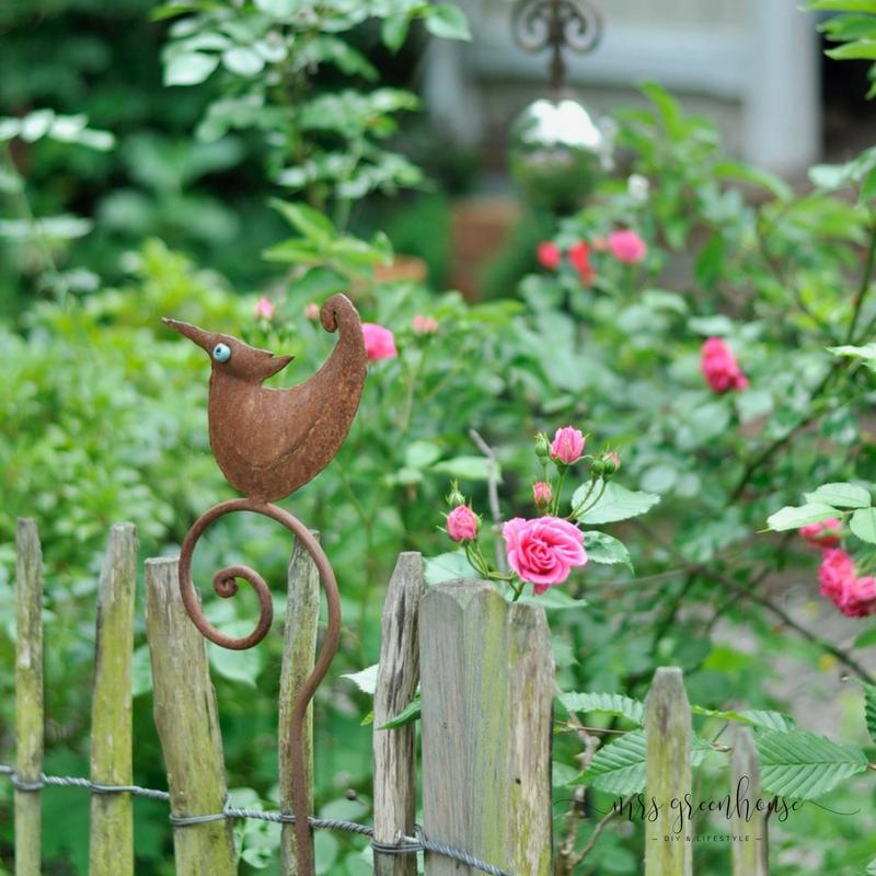 Etwas Neues genug Mein Rosengarten-Tipps zur Sortenwahl und Pflege von Rosen auf &BF_43