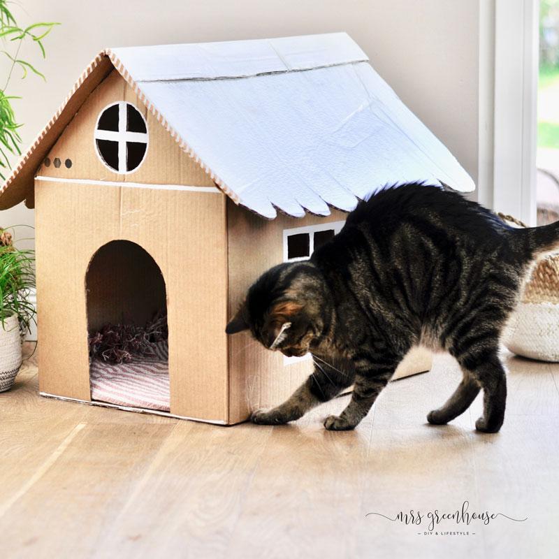 Katzenhaus Bauen