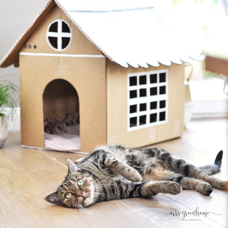 Katzenhaus Aus Pappe Bauen Mit Anleitung Auf Mrsgreenhousede