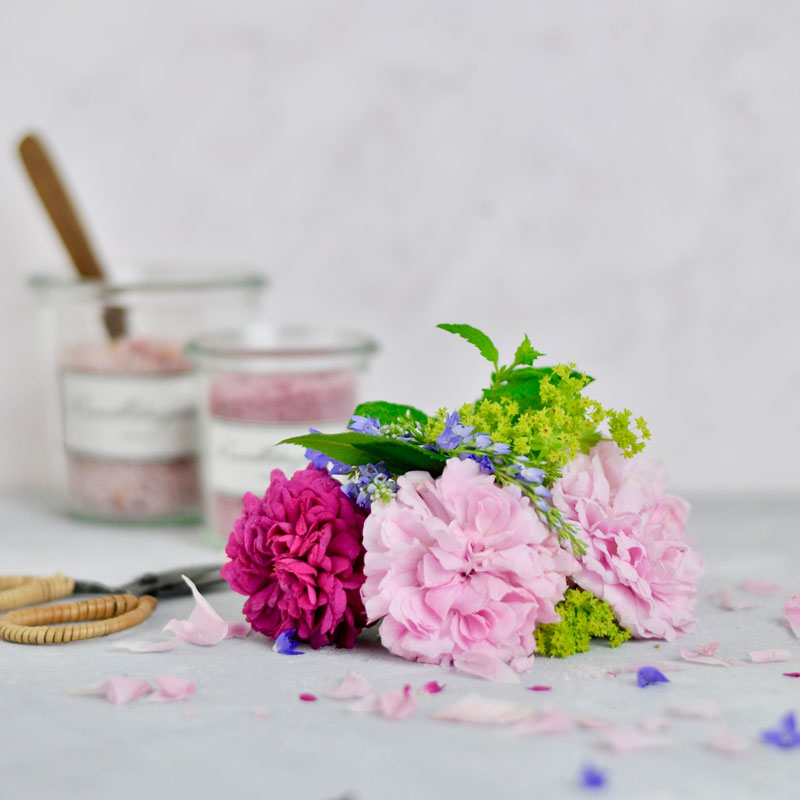 Rosenblüten für Roenblütenzucker