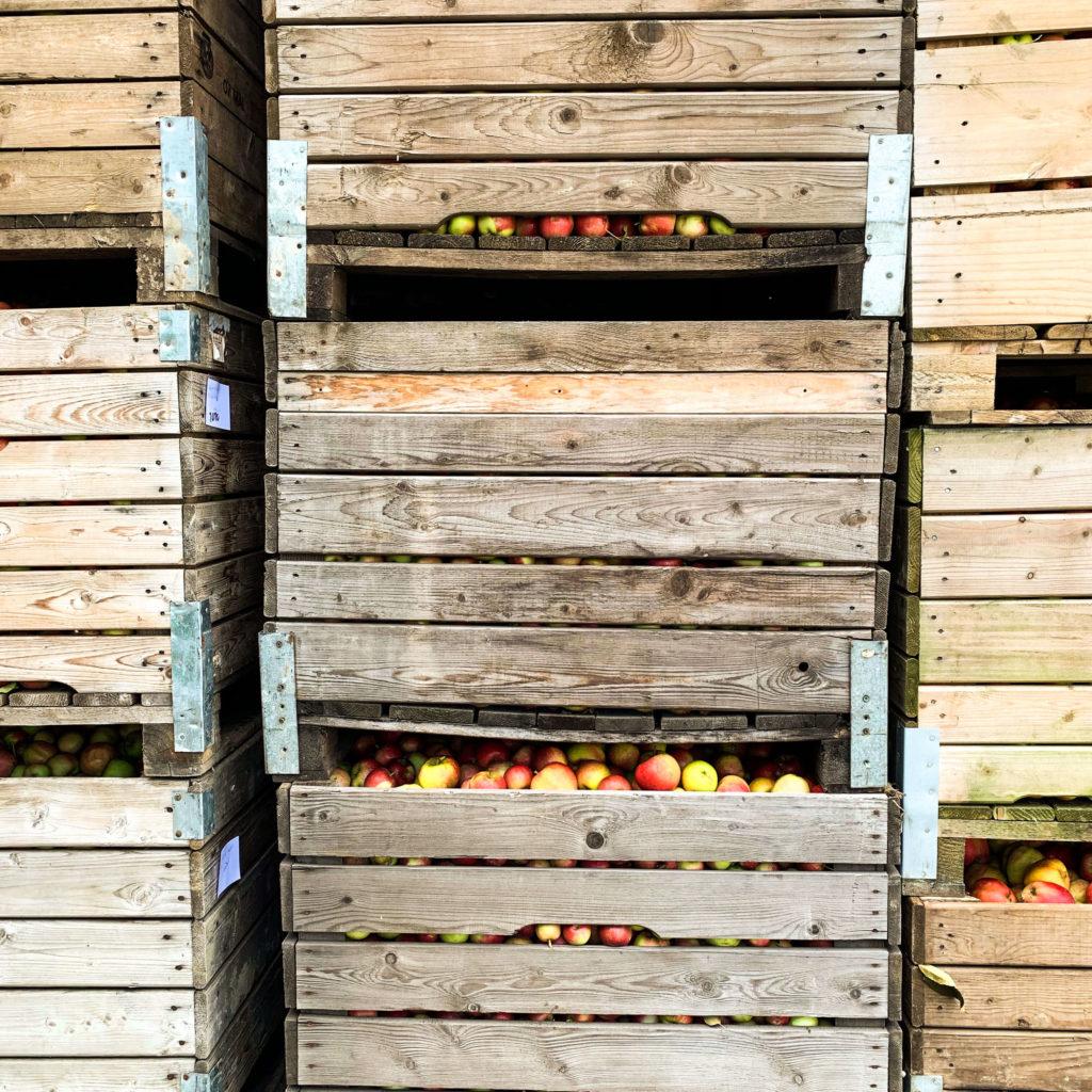 Obstkisten auf dem Obsthof im Alten Land