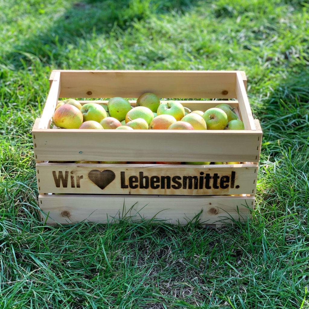 Apfelernte aus dem Alten Land vom Biohof Rolker