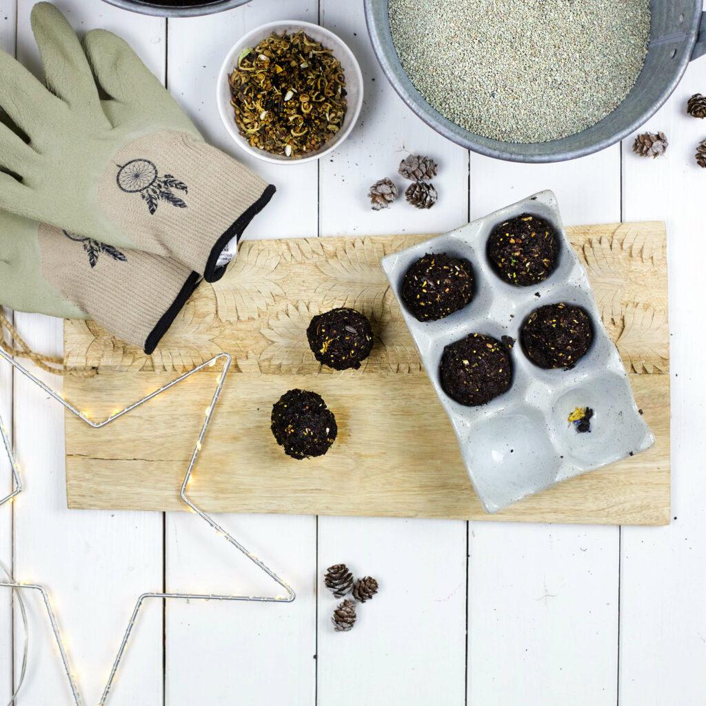 Seedbombs herstellen
