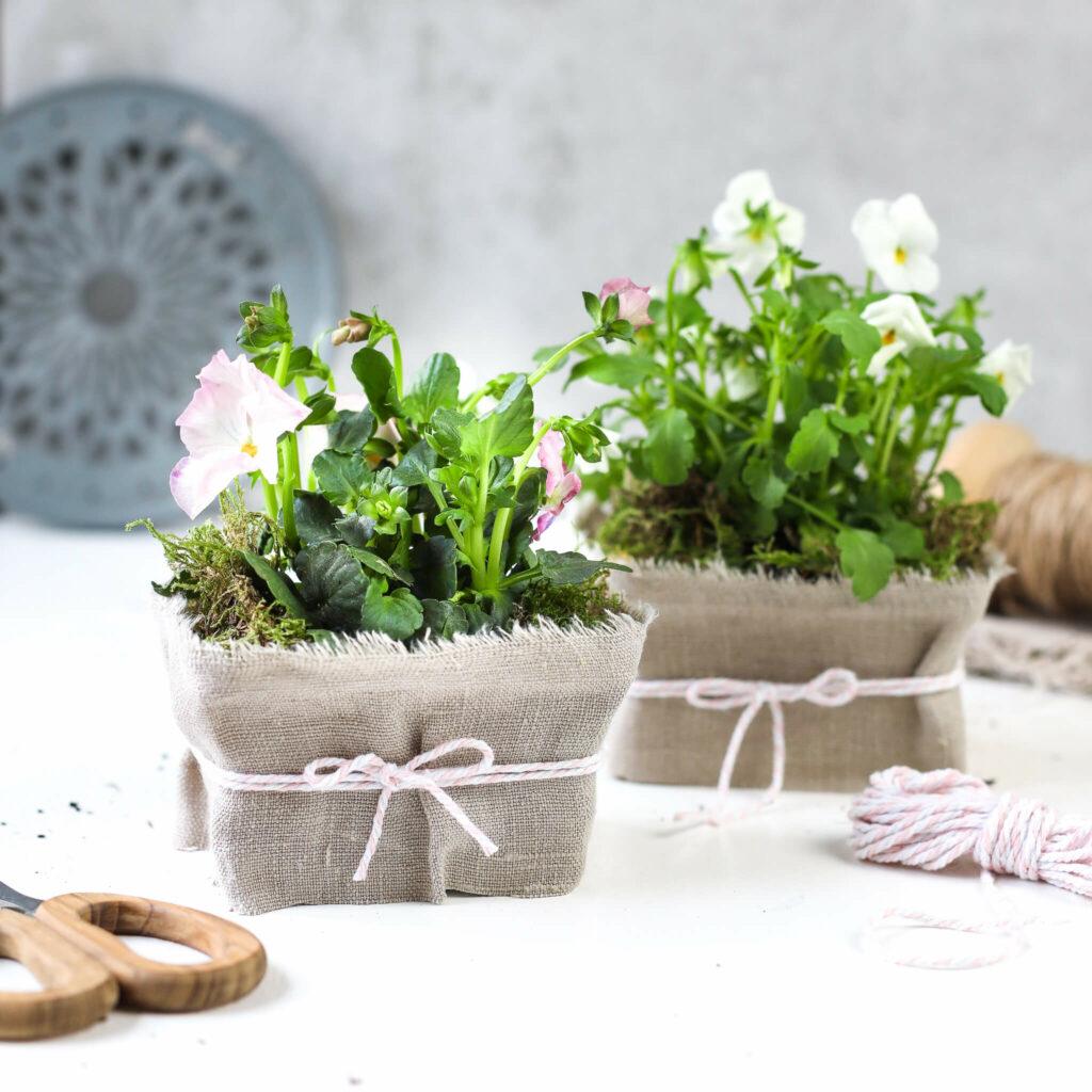 Blumendeko mit Butterschmalz Verpackung