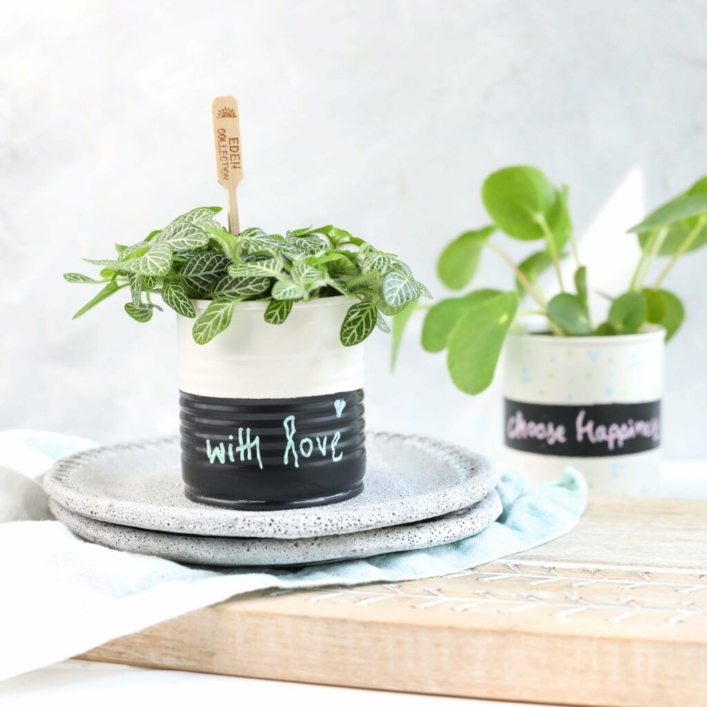 DIY Pflanztöpfchen aus Konservendosen mit Lack besprühen und mit Kreidemarkern verzieren
