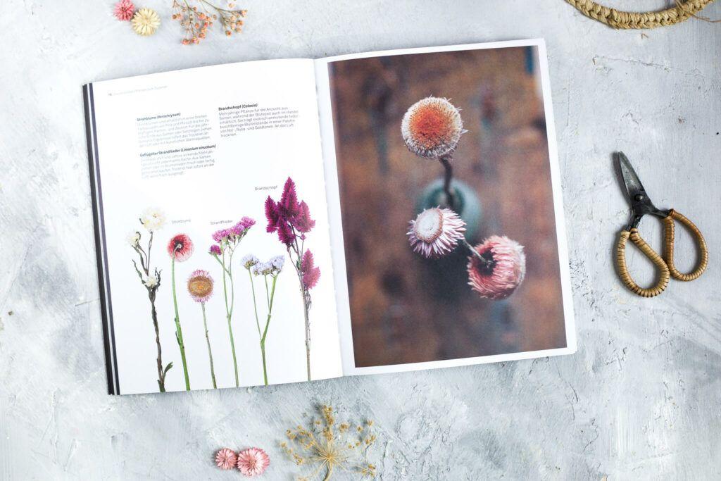 Buchtipp Trockenblumen